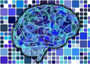 brain-951845_1280